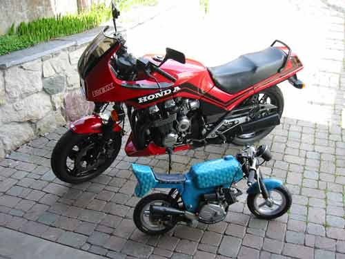 motorrad pocket bike. Black Bedroom Furniture Sets. Home Design Ideas